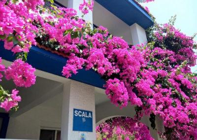 Scala Aparts